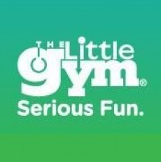 The Little Gym of Fitchburg: Grade School Skill Thrill