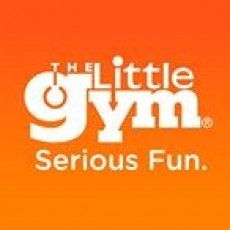 The Little Gym of Middleton: Super Quest Camps