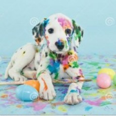 Easter Pet Photos
